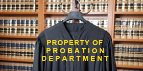 Probation Department Petition for Writ of Certiorari